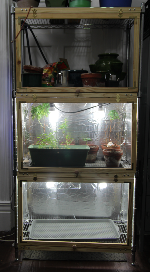 full grow setup