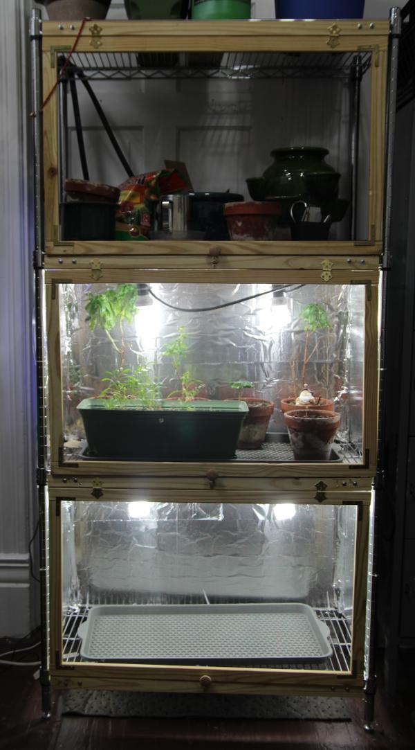 full grow setup